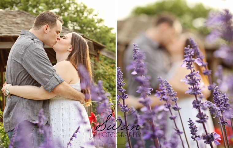 Fort Worth Botanic Garden, FWBG engagement session, Swan Photography, Affordable photography, affordable wedding photographer, DFW photographer, love, engagement session