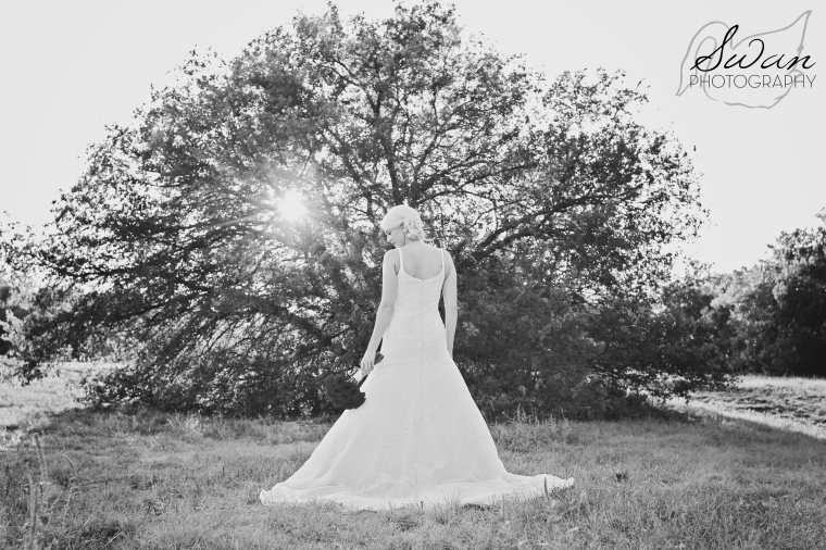 Bridal session, Bridals, Swan Photography, DFW wedding photographer, affordable photographer, affordable wedding photography, Benbrook photographer